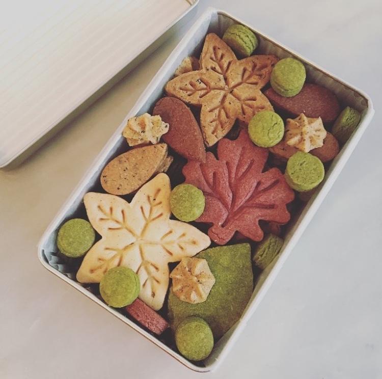 9月 クッキーBOX オータム缶